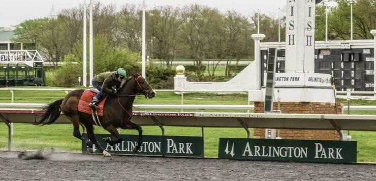 IRB Recapture Horse Racing